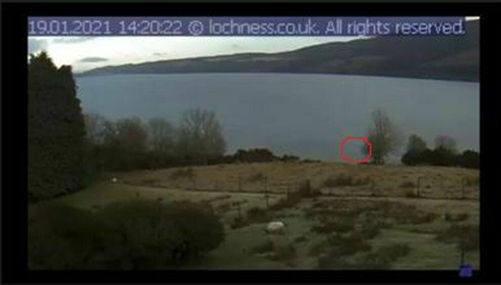 Scozia Nuovi Avvistamenti Del Mostro Nel Lago Di Loch Ness