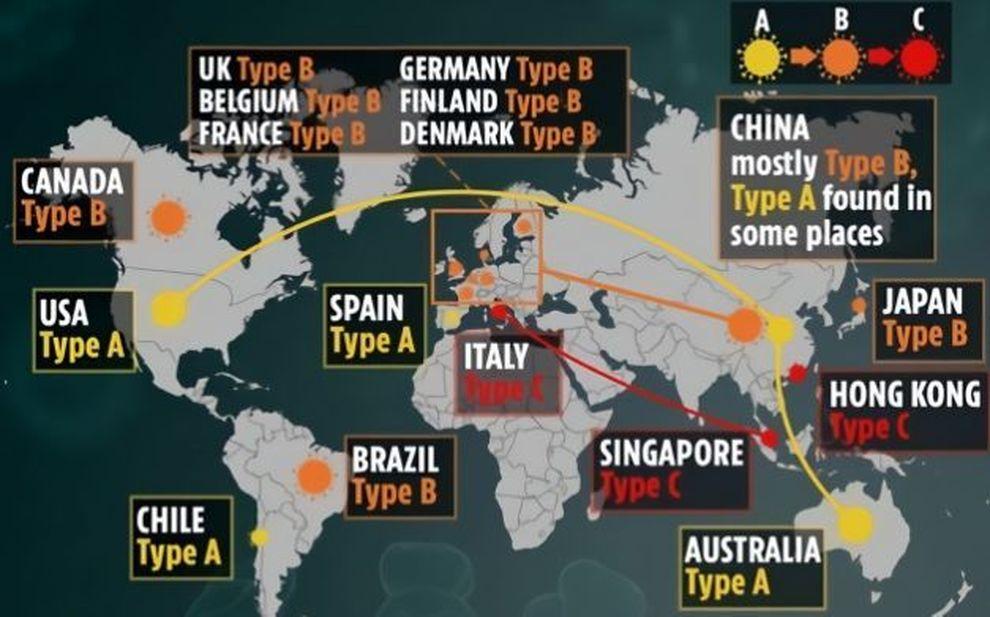 Coronavirus Si E Diffuso A Settembre E Non Da Wuhan Tre Varianti Maxistudio Britannico