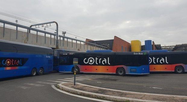 Cotral, entro Natale in strada 50 nuovi bus: boom (+60%) dei biglietti con l'autista-controllore