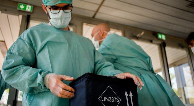 Coronavirus, l'esperto: «Nel Lazio sta arrivando adesso il picco e in alcune regioni non c'è discesa»