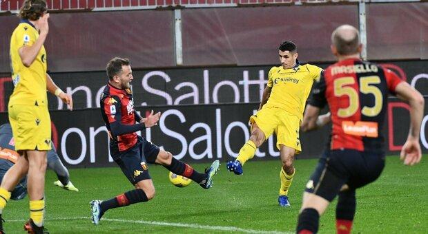 Il Genoa barcolla ma non molla: doppia rimonta sul Verona, finisce 2-2 a Marassi
