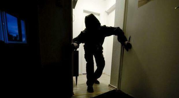 Parco Schuster, arrestati due ladri di appartamento: sequestrata la refurtiva. Con loro anche un cane