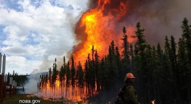L'Artico in fiamme. Immagine di repertorio pubblicata da NOAA (National Oceanic and Atmospheric Administration)