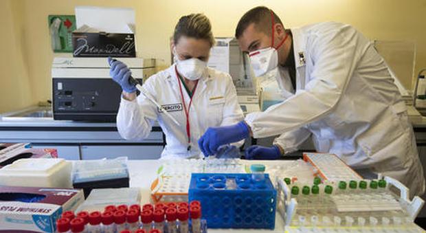 Coronavirus, tamponi obbligatori in azienda: ecco cosa prevede la legge