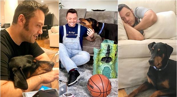 Tiziano Ferro, il cane Beau operato d'urgenza per emorragia interna: «Notte insonne, poche speranze di farcela»