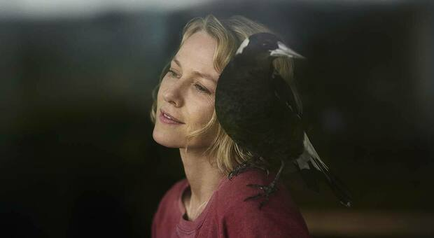 Naomi Watts e Penguin Bloom