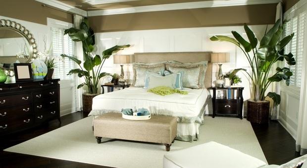 Piante in camera da letto si pu ecco quali scegliere - Piante da camera da letto ...