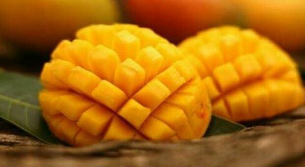 Dieta, i benefici del mango: «Supereroe della frutta»