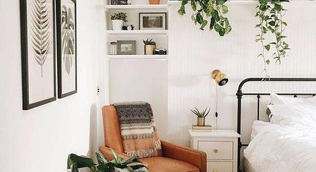 Pianta Camera Da Letto Ossigeno : Piante in camera da letto si può ecco quali scegliere