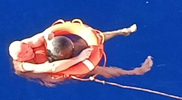 Marinaio sopravvive in mezzo al Pacifico per 14 ore aggrappandosi a una vecchia boa alla deriva
