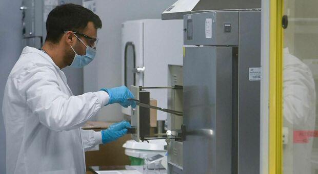 Covid: Lilly-Glaxo, il nuovo mix di 2 anticorpi monoclonali contro le varianti