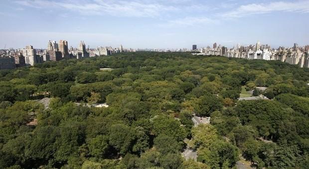 immagine L'attico di Luciano Pavarotti a New York