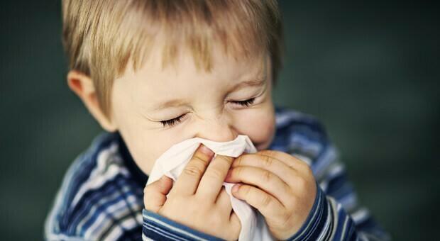 Covid in calo, ma tornano i virus respiratori stagionali. Allarme dalla Spagna: «Picco influenzale anomalo a giugno»