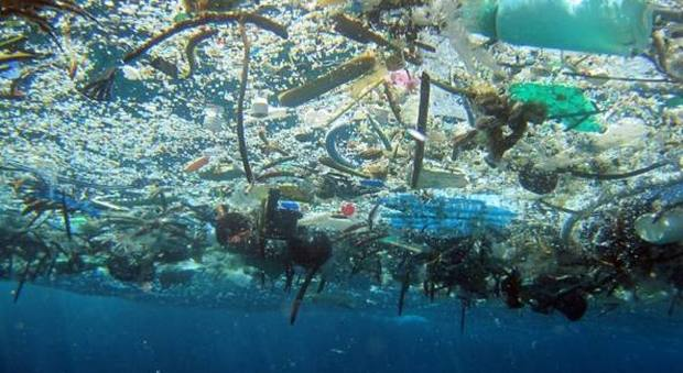Mar Mediterraneo, allarme inquinamento: concentrazione di microplastiche più alta del mondo