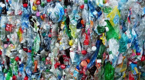 """Federdistribuzione contro """"Plastic Tax"""": """"Non aiuta e danneggia consumatori"""""""