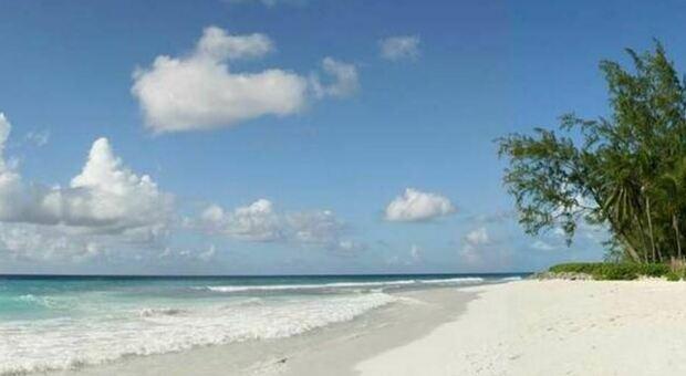 Bahamas, naufraghi sopravvivono per 33 giorni su un'isola deserta mangiando cocco