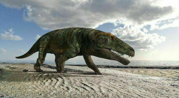 Scoperte sulle Alpi orme di grandi rettili sconosciuti. I paleontologi: «Antenati dei coccodrilli»