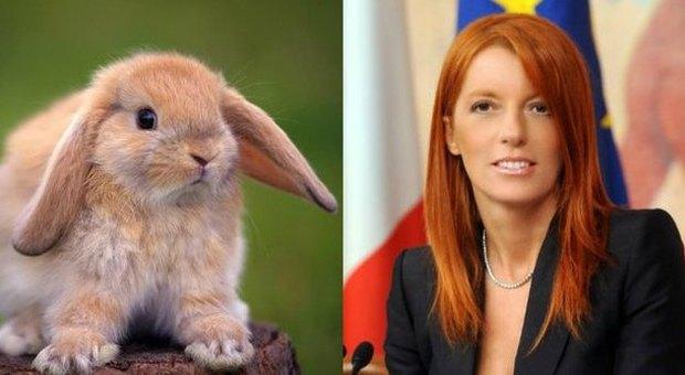 Animali, proposta della Brambilla: «Carcere per chi mangia coniglio in Italia»