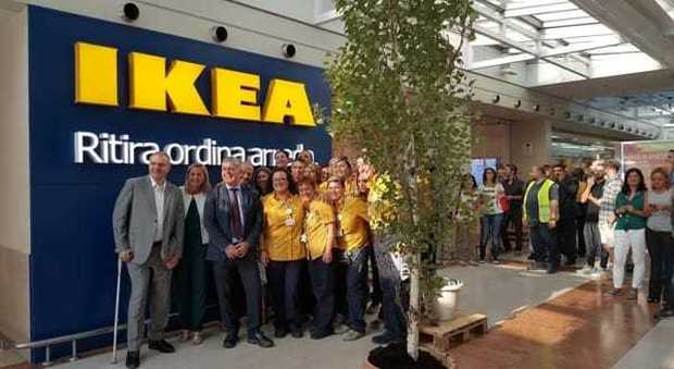 Ikea Sbarca Nei Quartieri La Merce Si Ordina Sul Web