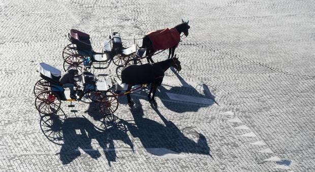 Ronde animaliste per salvaguardare i cavalli delle carrozze a Roma (immagine Ansa)