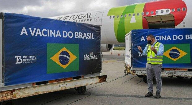 Brasile, il ministero confonde gli stati: Amazonas (4 milioni di abitanti) riceve solo 2.000 dosi di vaccino