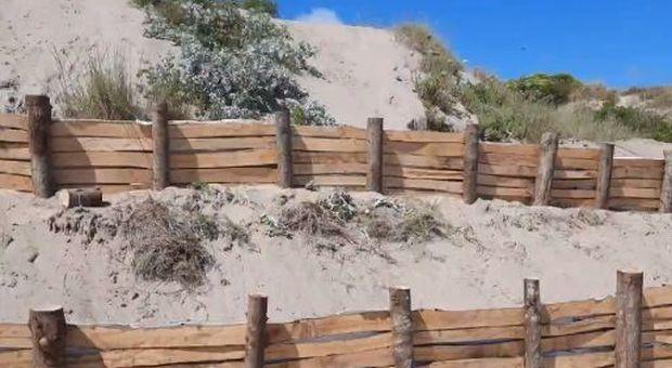 Castelporziano, arrivano le barriere di legno. «Così conteniamo le dune»