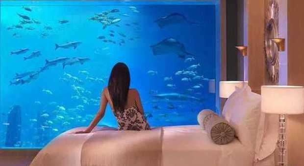 Il resort icona degli Emirati Arabi, permette di vivere ore spensierate a diretto contatto con l'acqua e i paesaggi bizzarri di Dubai