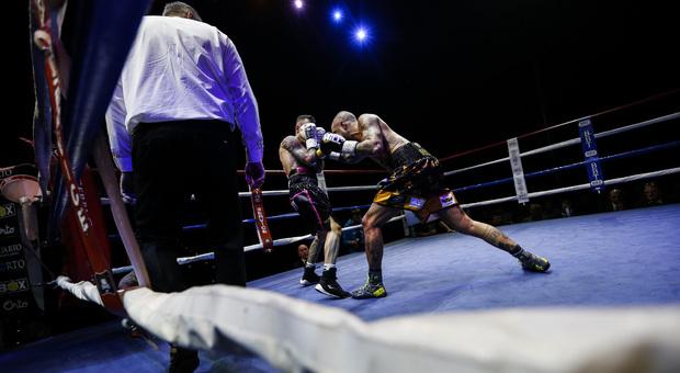 Boxe, il romano Forte conquista il titolo europeo. Successi di Faraoni, Falcinelli, Rossetti e Demollari