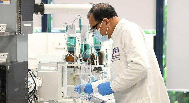Nei laboratori della Pfizer si lavora al vaccino contro il Covid
