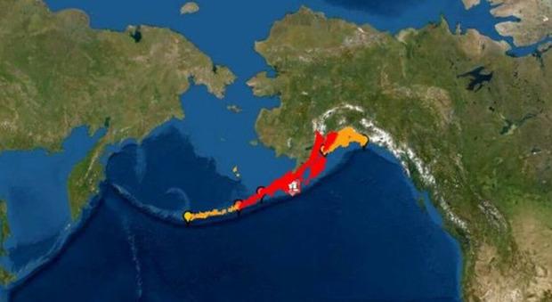 Terremoto Alaska di 7.8. Allerta tsunami in un raggio di 300 km, California esclusa