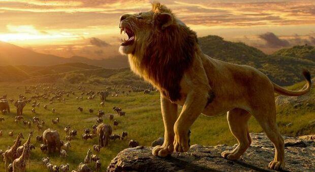"""Una scena de """"Il Re Leone"""", il film che John Favreau ha realizzato facendo largo ricorso alla realtà virtuale"""