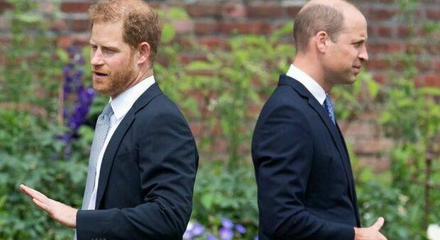 I principi Harry e William