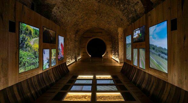nella foto una sala del Tempio del Brunello di Montalcino