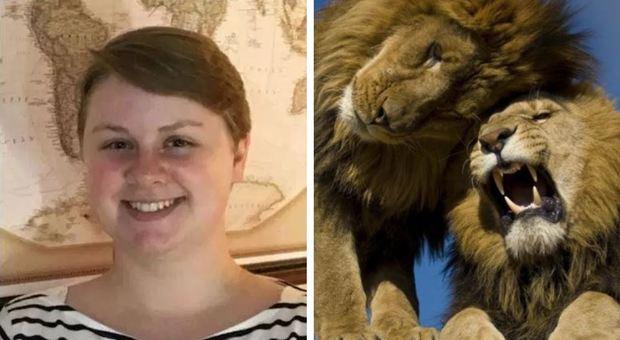 Usa, leone fugge da recinto e uccide giovane stagista di uno zoo
