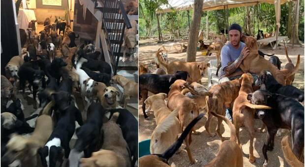 Arriva l'uragano. Un uomo acccoglie 300 animali a casa sua. (immagini pubbl da Ricardo Pimentel Cordero su Fb)