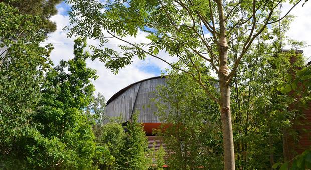 immagine La cavea dell'Auditorium si trasforma in un bosco: a Roma il Festival del verde e del paesaggio