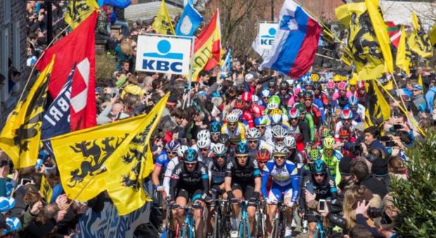 Giro delle Fiandre, sfida tra Sagan, Gilbert e Van Avermaet. Prima volta per Nibali