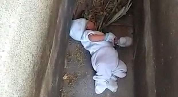 Bimbo di 2 mesi abbandonato in un cimitero: «Ha rischiato di essere sbranato dai cani randagi»