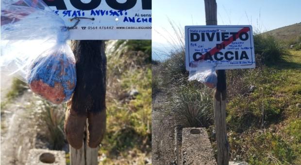 Un finto divieto di caccia con un inquietante messaggio allegato