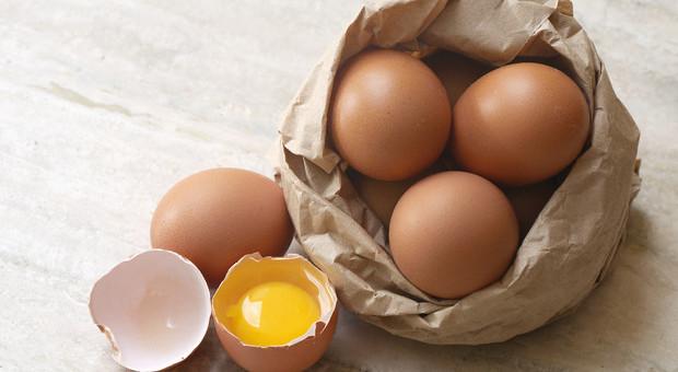 Occhi, da 2 a 4 uova a settimana difendono la vista dalla maculopatia