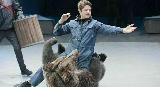 «Parlo con l'orso», aspirante addestratore entra nella gabbia del circo e muore sbranato a 28 anni