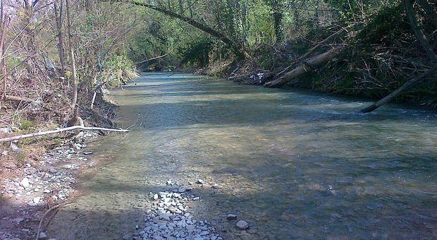 Ragazzo morto nel torrente Idice vicino Bologna: sarebbe scivolato sulla riva