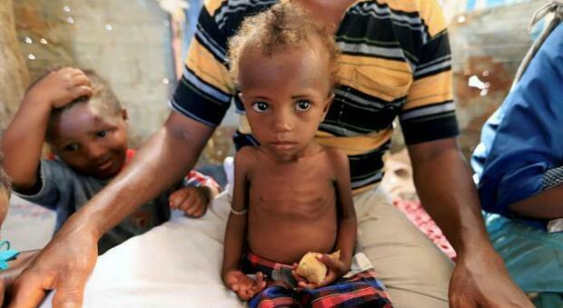 Emergenza mondiale, il Papa denuncia alla Fao la crescita esponenziale di persone affamate