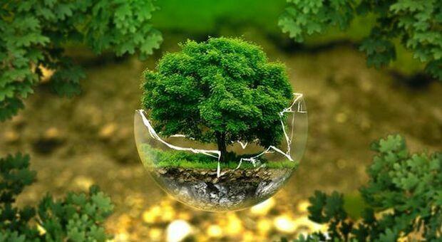 Energie rinnovabili, per gli italiani il futuro è sempre più green