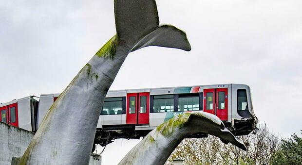 Metro deraglia in Olanda, treno salvato dalla coda di una balena in plastica