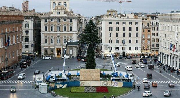 Spelacchio 2020, Roma ci ripensa e l'albero di Natale torna in piazza Venezia