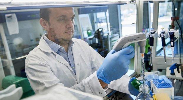 """Coronavirus, ricostruita la """"rotta"""" della pandemia, attraverso le mutazioni del genoma"""