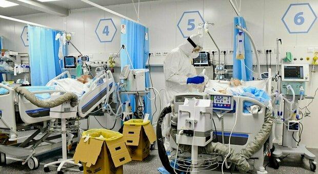 Covid, Eli Lilly: «Con anticorpi monoclonali - 87% ricoveri e decessi. Efficaci anche su varianti»