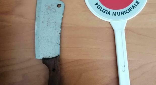 Facevano a pezzi una pecora nel centro di accoglienza, denunciati due nigeriani