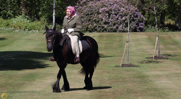 Regina Elisabetta, prima foto ufficiale dopo il lockdown: a cavallo a 94 anni